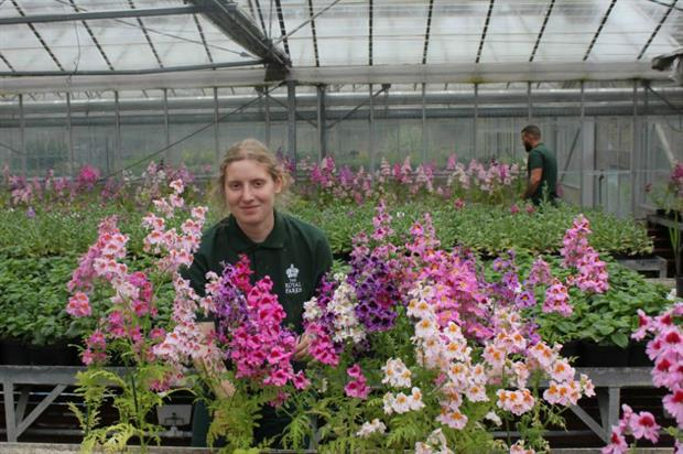 Royal Parks apprentice Verity Joiner. Image: The Royal Parks