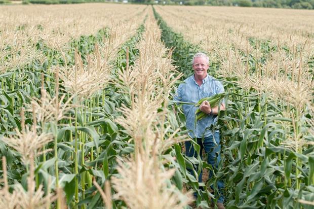 Waitrose supplier Grant Lumsden of Sefter Farm, West Sussex - image: Waitrose