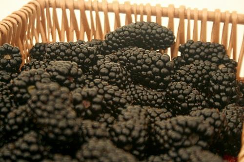 Blackberries - image:HW