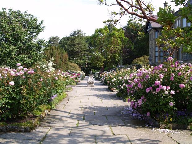 Bodnant rose terrace