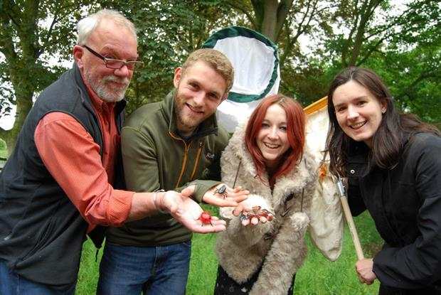 Geoff Stanley, Jonathan Finch, Charlotte Rowley and Fran Sconce preparing for All About Insects