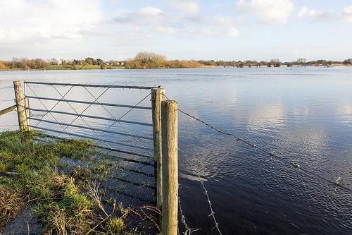 Flooded field - image: Shaun Dunphy