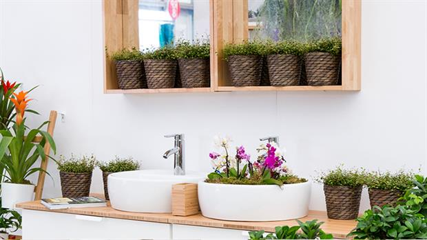 Indoor Garden Design And Ikea To Promote Workplace Plants At Chelsea