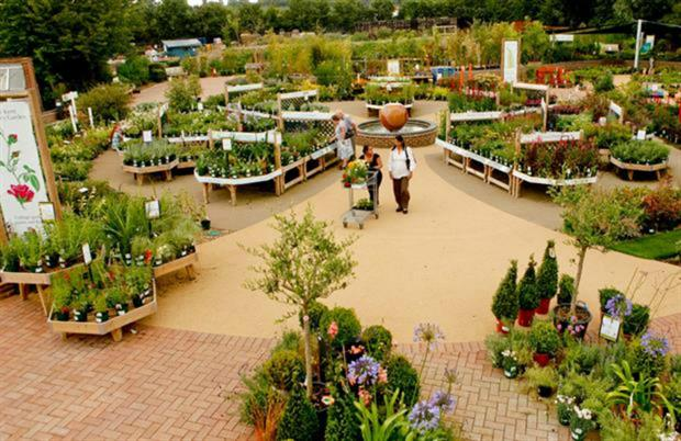 Millbrook Garden Company Posts Improved Turnover Figures