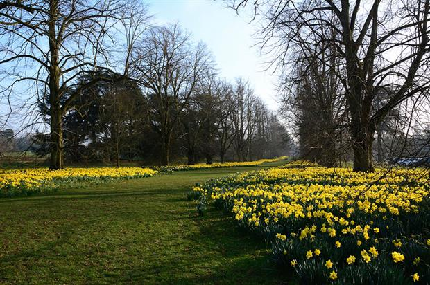 Nowton Park - image: Flickr/Martin Pettitt (CC BY 2.0)