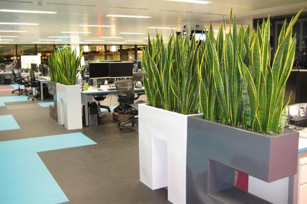 Interior Landscape: Installation Only - GP Plantscape Skyscanner, Edinburgh EH3