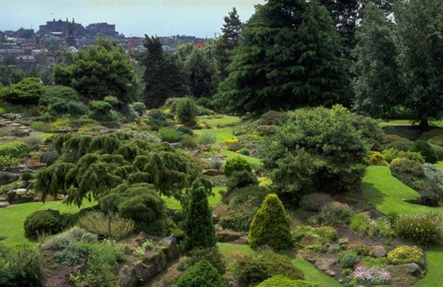 Royal Botanic Garden Edinburgh Hosts Bee Events