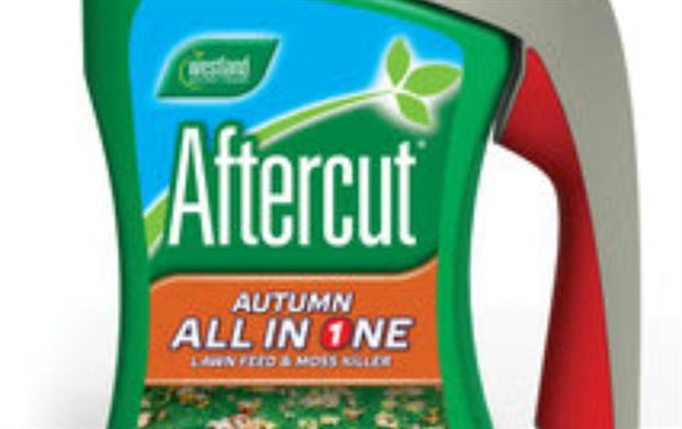 Aftercut autumn