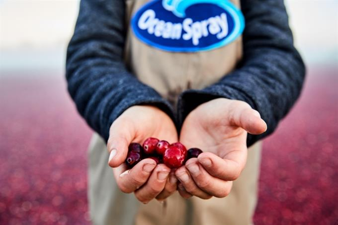 Ocean Spray commits to sustainability with 700 farmers