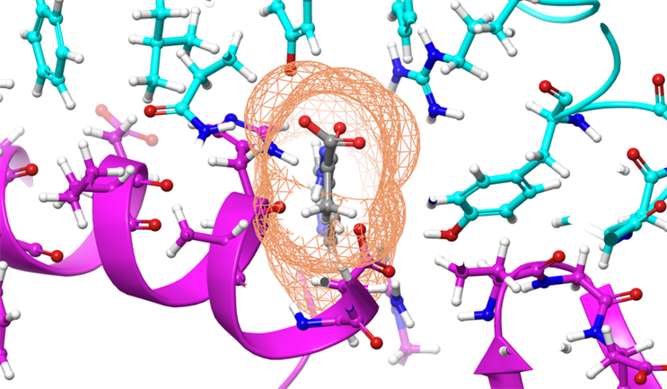 coronavirus molecules image