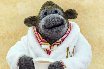 APG Creative Strategy Awards - PG Tips 'monkey' by Mother London