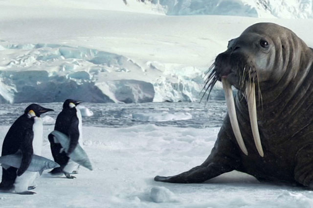 Argos: 'walrus' campaign by CHI & Partners