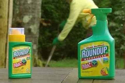 Roundup…pitch began in November
