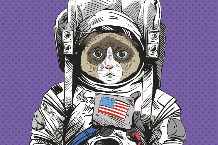Campaign Diary: Anomaly honours cat in space and Lego gets political