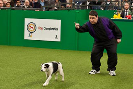 John Smith's: 'dog show' work by TBWA