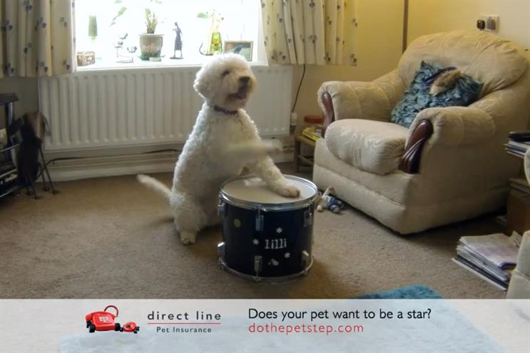 Direct Line: shot up the search engine rankings following its 'Pet Step' activity