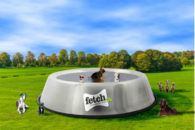 Fetch: educating pet owners on hydration