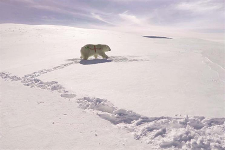 Paddy Power says sorry for controversial polar bear campaign after social media backlash