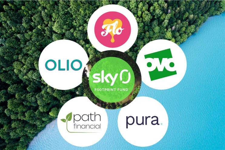 Sky Footprint Fund: five winners