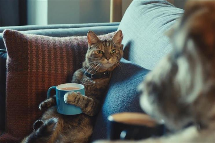 Tetley: Spark44 put furry friends at the centre of the action