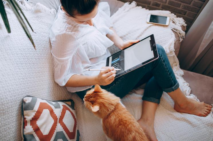 Working from home: pets have become a fixture in countless video calls