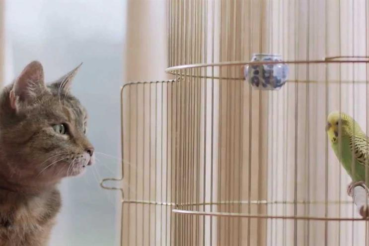 Freeview: Cat & Budgie TV campaign