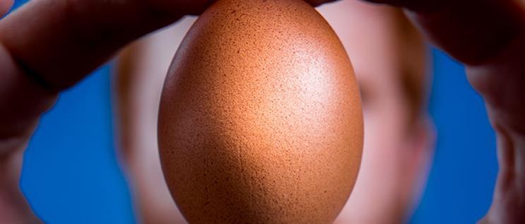 I made this: Chris Godfrey and Eugene the Instagram egg