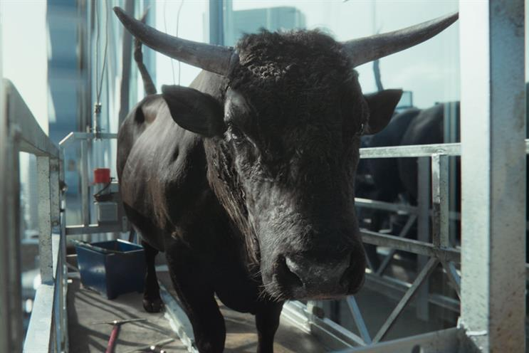 Moneysupermarket: bull features as mascot