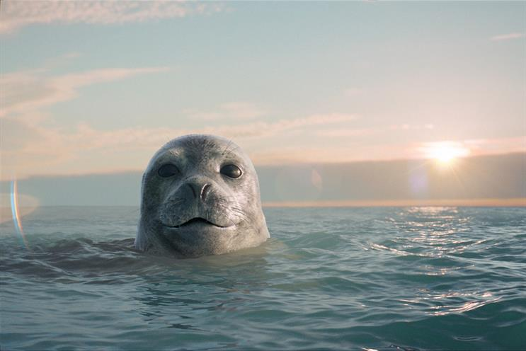 Seal: no relation to the singer