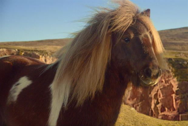 Three: Ad featuring Shetland pony proved popular over 2013