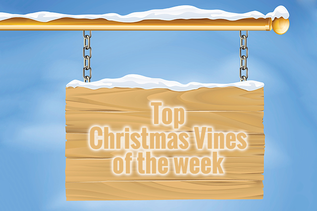 Nothing better than a seasonal Vine to get you in the mood for Christmas