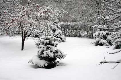 Affecting hospital services: heavy snow