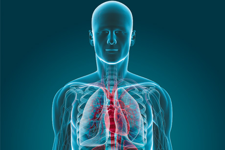 Risk: Heart failure affects one in 100 people in the UK