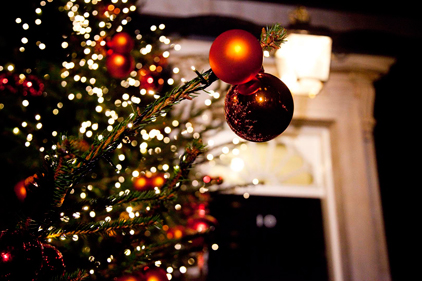 Christmas trees: 'buy real' consumer campaign
