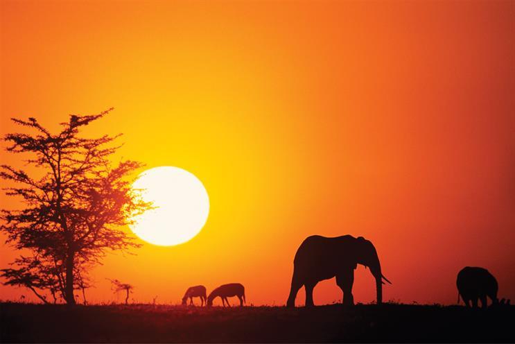 Postcard from Kenya