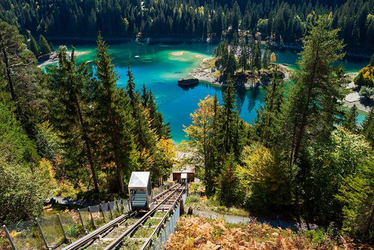 Rooster's brief includes the launch of Europe's longest treetop walk next summer