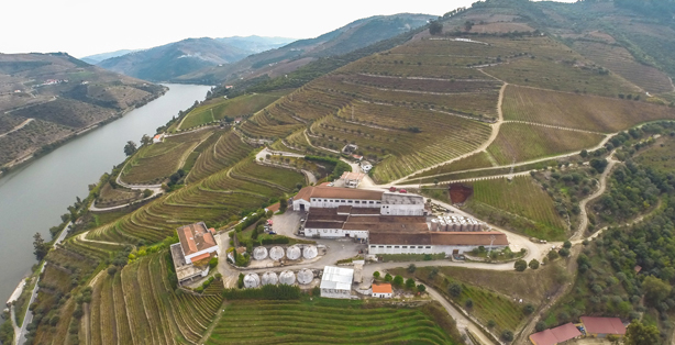 Sopexa appointed by Portuguese wine and port firm after becoming private company