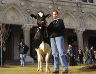 Daisy the cow leads charge as CT dairy farmers seek state funding