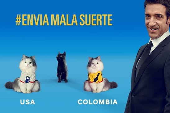 Allstate brings back psychic cat to predict outcome of Copa America