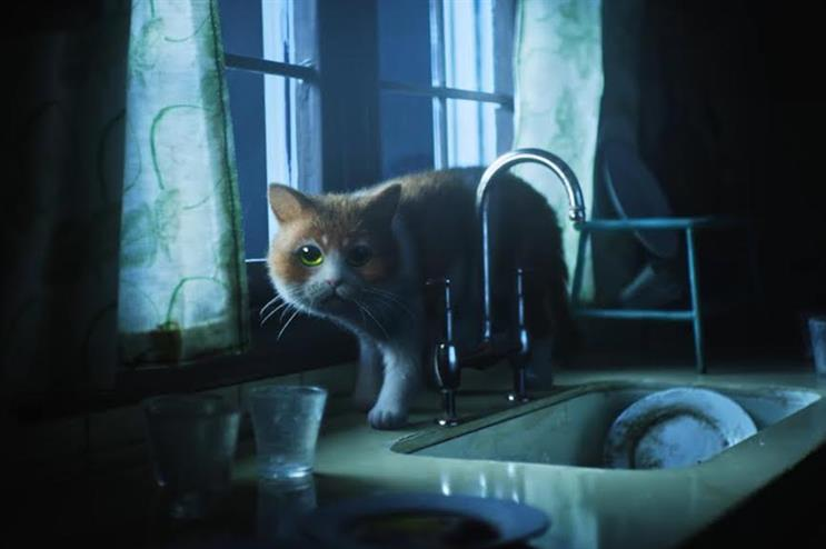 Behind the scenes of the first horror film made just for cats