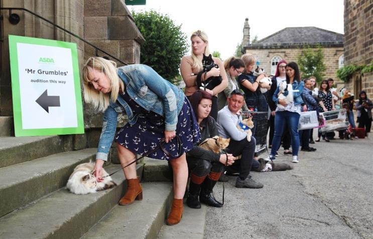 #MrGrumbles - Festive feline fame awaits star of new Asda Christmas campaign