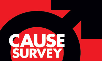 Cause Survey 2010: The male perspective