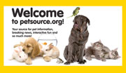 Branding becomes WWPIA's pet project