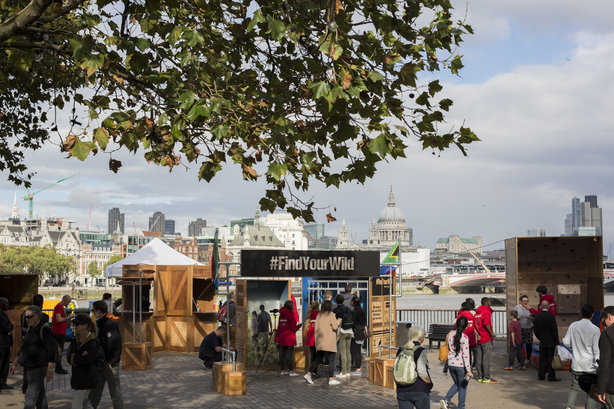 Five campaigns we liked: shark diving on the South Bank for South African Tourism