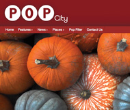 E-zine publisher takes its local model across the US