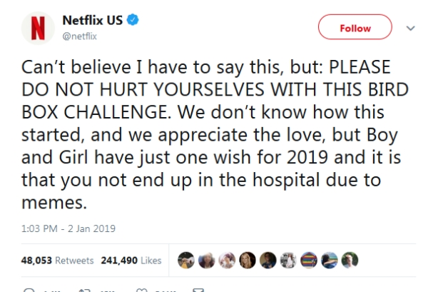 Should Netflix have turned a blind eye to the Bird Box Challenge?