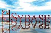 Firms vie for Sybase work