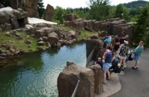Oregon Zoo to create marcomms agency roster