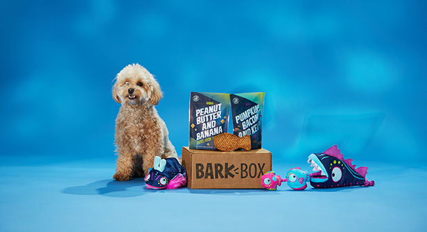 Barkbox has used digital storytelling and outdoor media to enhance its brand.