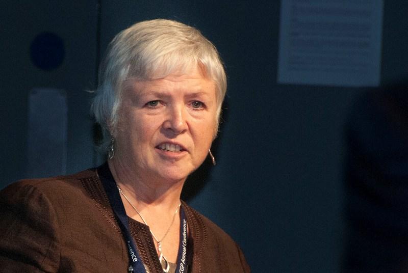 Professor Amanda Howe: no guarantee of GP workload reduction (Photo: Pete Hill)